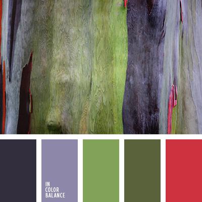 paleta-de-colores-2626