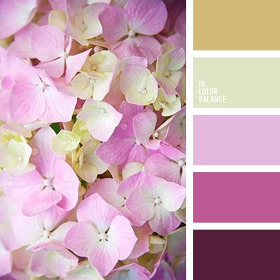 paleta-de-colores-2627