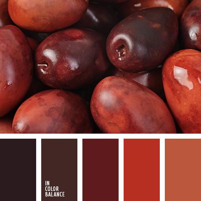 paleta-de-colores-2631
