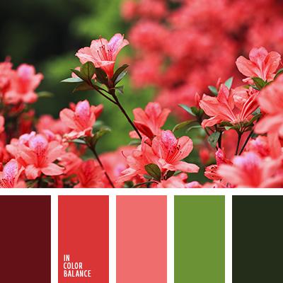 paleta-de-colores-2632