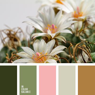 paleta-de-colores-2635