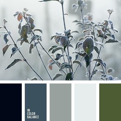 paleta-de-colores-2637