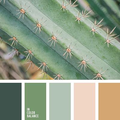 paleta-de-colores-2640